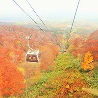 紅葉の那須高原とマウントジーンズ空中散策