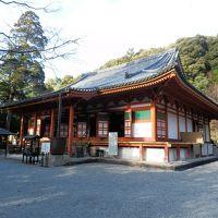 回顧録 2014年年末 大阪和歌山の旅(1) 泉北と河内