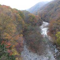 西沢渓谷(山梨)の紅葉