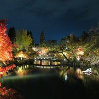 2015年そろそろ紅葉 そうだ京都へ行こう!! 行ってきました永観寺と青蓮院ライトアップ♪