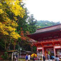 まだまだ旅行気分の、週末の滋賀散策〜♪ �比叡山延暦寺と日吉大社の紅葉を堪能し、滋賀をもっと好きになった日