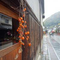 竹原の町は雨だった。しっとり濡れて,古い街並を歩きました。