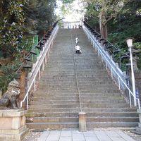 「出世の石段」で有名な愛宕神社を参拝する