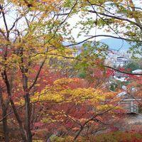 2015.11.24〜11.26 Short Trip in 京都�
