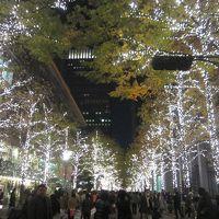 有栖川宮公園の紅葉 と 東京ILLUMINATION廻り