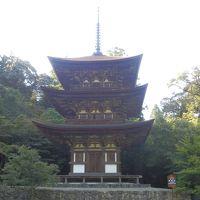 回顧録 2013年10月3連休 滋賀の旅(2) 湖東三山ほか