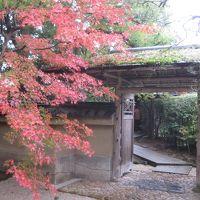 レンタカーで回る広島・山口・島根・鳥取の旅6日間⑥境港の水木しげるロードと足立美術館を楽しむ