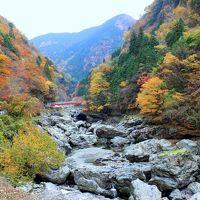 2015紅葉歩き〜奈良県 みたらい渓谷〜洞川温泉・龍泉寺 前半