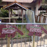 大牟田動物園に行ってきました