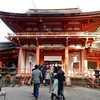 奈良公園・興福寺・春日大社・東大寺を巡る