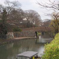 東京から車で滋賀の神社仏閣と近江八幡を巡る旅