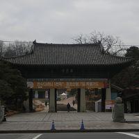 週末韓国ひとり旅<2>