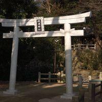 梅を見たついでに枚岡神社へ参拝