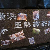 【横浜】野毛山動物園&爬虫類カフェ