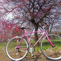 自転車に乗って春を探そう