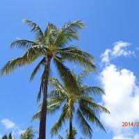 Hawaiian Breeze 2014 〜おいしいメキシカン&ホノルルフェスティバル〜