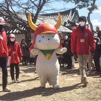 東京から滋賀へ遊びに来た初めてのお客様と一緒に… Vol.2 ひこにゃんに会いに彦根城へ + 琵琶湖viewのホテルに宿泊!