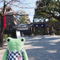 何もしない贅沢 温泉と熊本旅 2