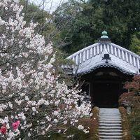 福知山城と桂離宮