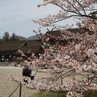 201603-02_出雲國神仏霊場めぐり−その1(第一番〜第四番)- Pilgrimage to the 20 temples/shrines in Izumo (Shimane) -1