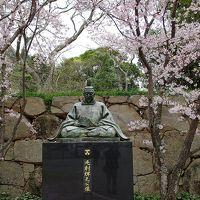 桜を巡る街歩き 萩城跡から城下町を抜けて