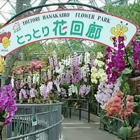 『フルムーンパスで行く北陸中国の旅』 その5  皆生温泉〜とっとり花回廊〜境港〜岡山