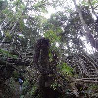 鋸山登山と日本寺参拝のあとは、温泉とビールでカンパイ