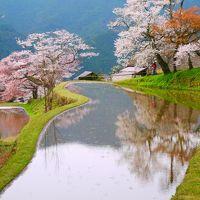 桜咲く三多気、新緑の赤目を歩こう!