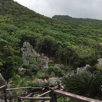 リベンジ!沖縄の旅★2日目★大石林山・今帰仁城跡・ネオパークオキナワで鳥と戯れ、語尾に「晴れてたら・・・」を連発した日。