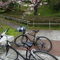 武蔵丘陵森林公園サイクリングロードを走り春の風を浴びる、熊谷桜堤で桜と菜の花の共演を愛でる/埼玉・比企、熊谷