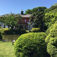 江戸時代から300年以上続く小石川植物園。みどりの日は無料公開なので行ってきました。