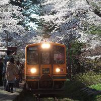 奥津軽いまべつ駅から五所川原まで
