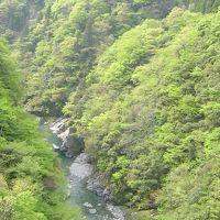 徳島:祖谷 「小便小僧」と「かずら橋」と「隠れ宿 祖谷美人」