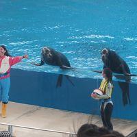 「横浜八景島シーパラダイス」へ行ってきた〜(2)「やっぱりいいね?水族館!」初めて入りました。