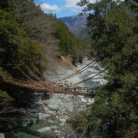高知から徳島かずら橋の絶景へ(四国3 徳島)