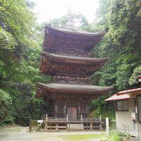 回顧録 2013年7月 茨城・栃木の旅(2) 内外大神宮・小山寺・筑波山神社など