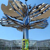 神代植物公園5/6 大温室 リニューアルオープン ☆珍しい植物1300種も展示