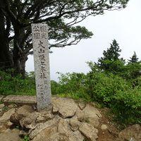 秦野 大山 No.3