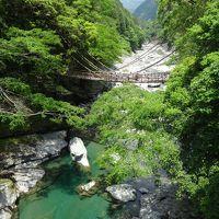 徳島・祖谷渓ドライブ 朝うどんと新緑とかずら橋 2015.5月