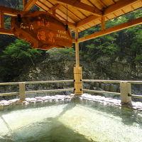 ケーブルカーで露天風呂に祖谷温泉とかずら橋