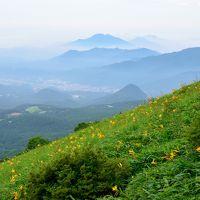 梅雨の合間にぷらっと日光へお出かけ【速報版】〜霧降高原を可憐に彩るニッコウキスゲを愛でる〜