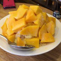 台湾12回目♪マンゴーを食べまくる旅 その2