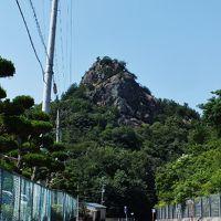 愛媛のサギソウ群生地と古代朝鮮式山城跡と超低山の岩山