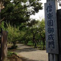 夏の終わりの偕楽園散策と白鳥の湖( ´ ▽ ` )