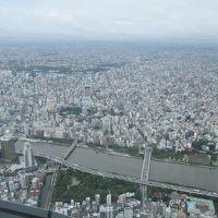 夏休みの社会科見学〜JAL機体工場見学と東京スカイツリーへ
