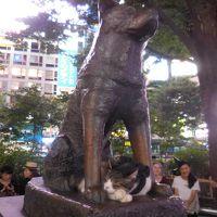 東京出身のわたしが、彼の家族(外国人)と一緒に東京観光
