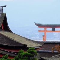 長門から安芸へ、想い出を辿る旅【4】〜安芸の宮島・厳島神社を参拝〜