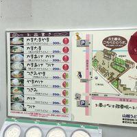 四国を時計回りで巡る3泊4日 〜讃岐うどん、徳島ラーメン麺ロード編〜