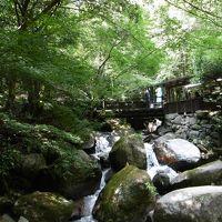2016夏の秋月で自然に浸る