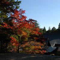 そうだ京都へ行こう…� 車で廻ろう早めの紅葉
